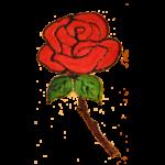 Rose Red (+R350.00)